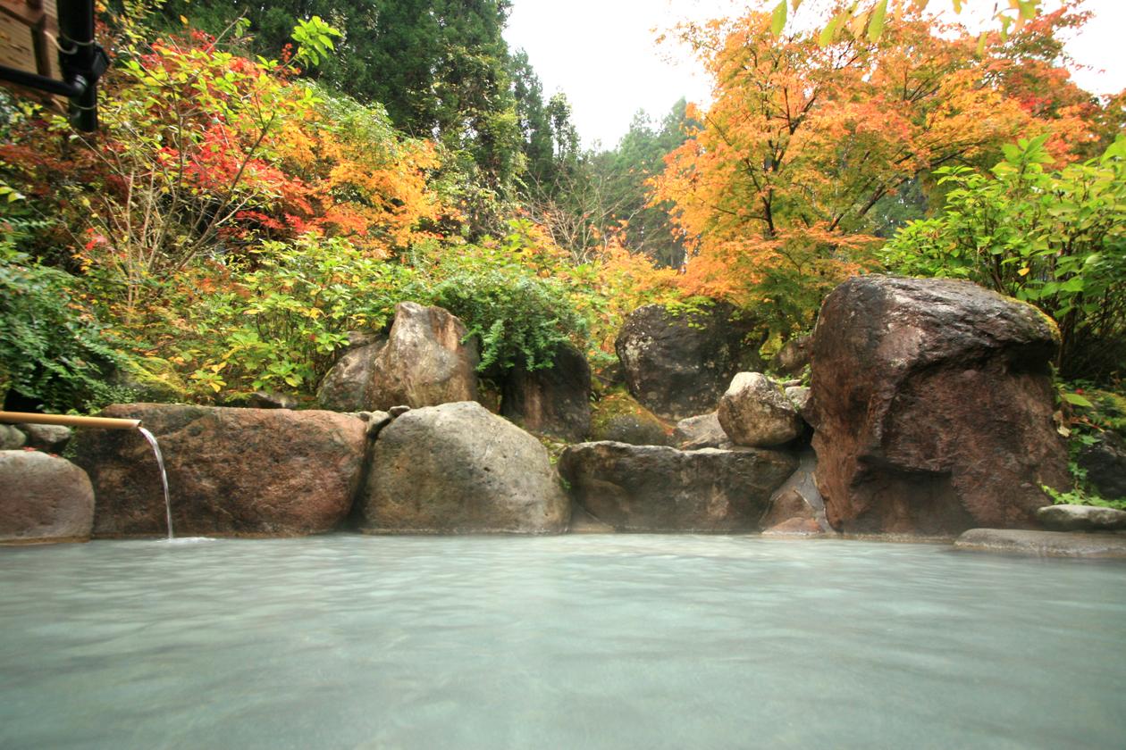 山川温泉 しらはなシンフォニーkouyouroten_yoko