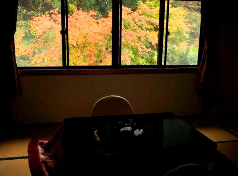山川温泉 しらはなシンフォニー 客室
