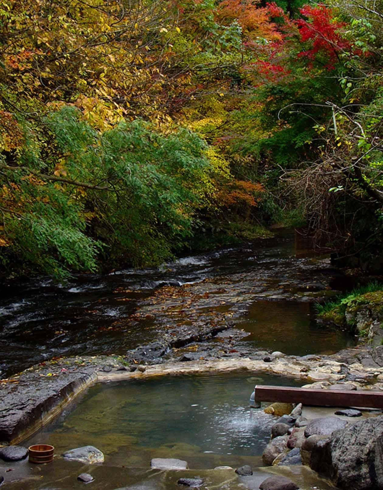 藤もと 川湯の紅葉