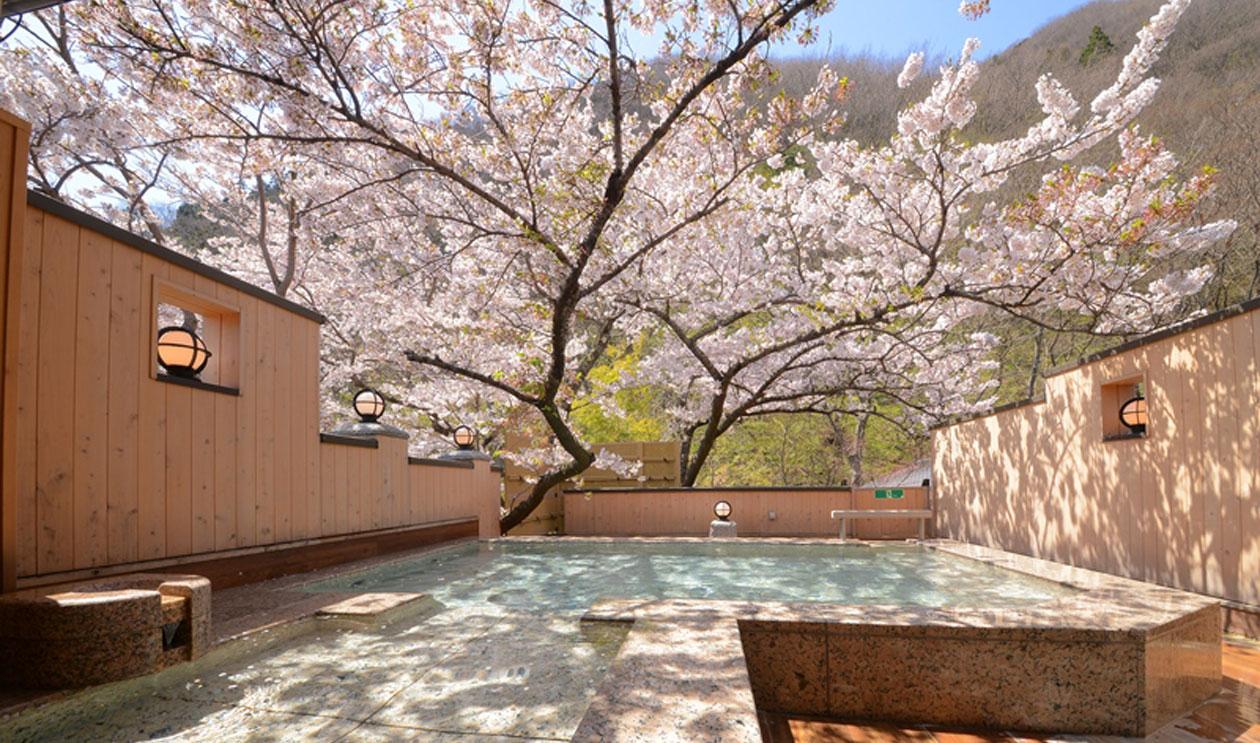 お宿でポン! 九州地方の離れのある旅館・温泉宿