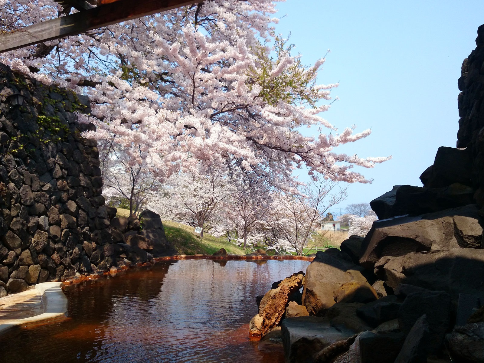 秋田県男鹿半島・男鹿温泉郷 男鹿ホテルの花見露天風呂