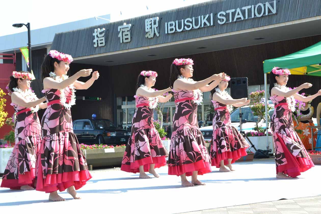 指宿市 いぶすきフラフェスティバル