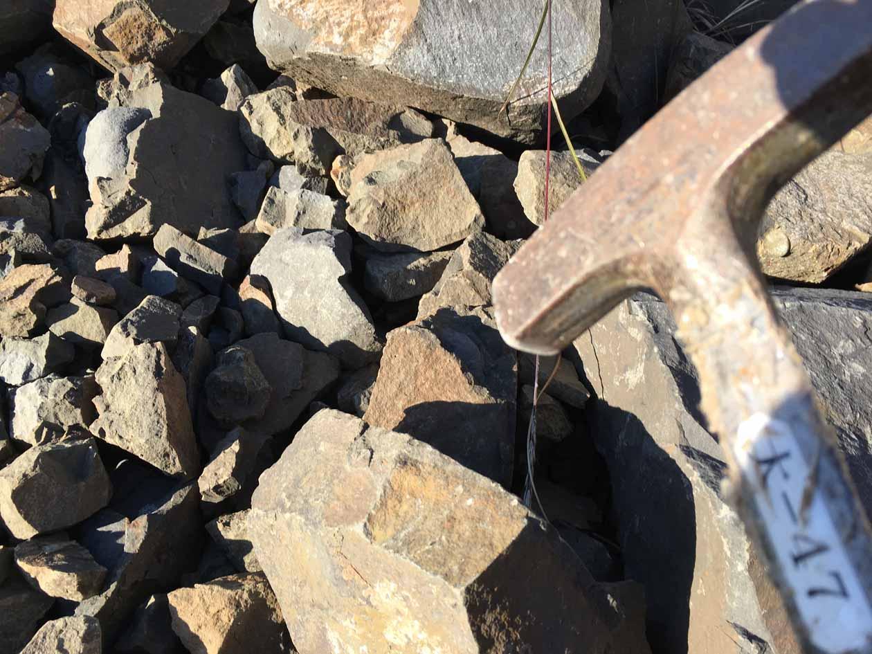 熊本県天草市御所浦町御所浦 恐竜の島 化石採集クルージング