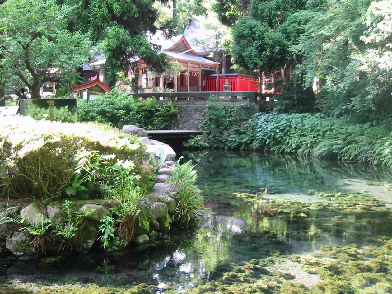 熊本県南阿蘇村 白川水源
