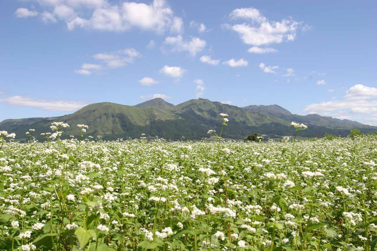 熊本県南阿蘇村