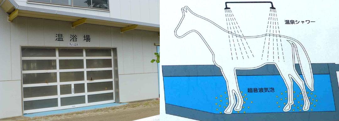 福島県 いわき湯本温泉 馬の温泉療養所 日本中央競馬会 競走馬リハビリテーションセンター