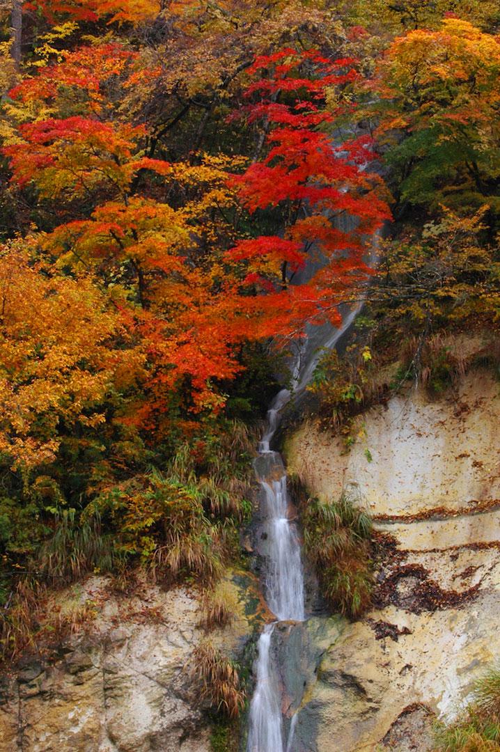 源泉かけ流しの紅葉露天風呂特集 福島県柳津町 会津西山温泉 滝の湯