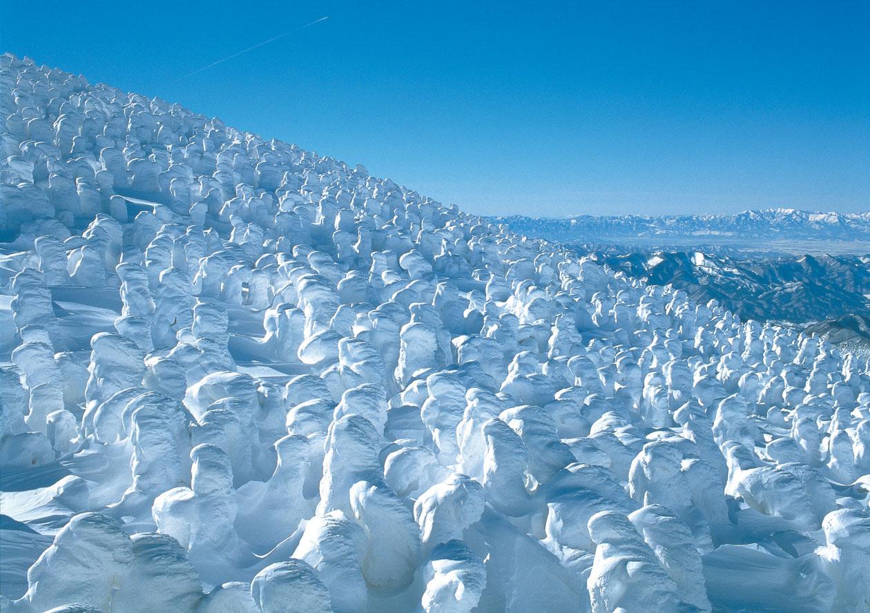 蔵王温泉「蔵王樹氷まつり」