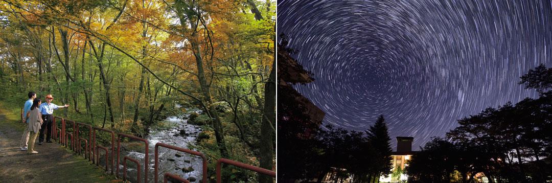 遠刈田温泉 「蔵王の森」がつくる美と健康の温泉宿 ゆと森倶楽部